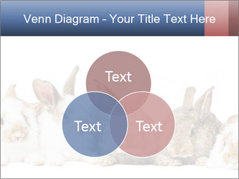 0000062278 PowerPoint Templates - Slide 33