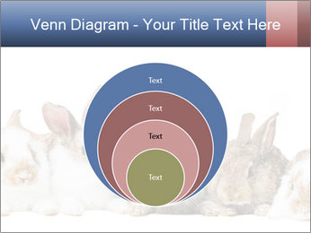 0000062278 PowerPoint Templates - Slide 34