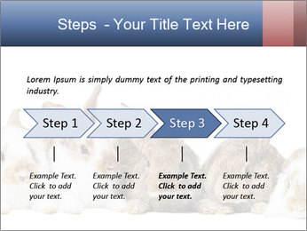 0000062278 PowerPoint Templates - Slide 4