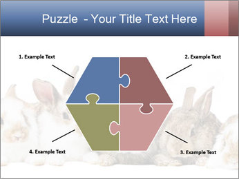 0000062278 PowerPoint Templates - Slide 40