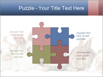 0000062278 PowerPoint Templates - Slide 43