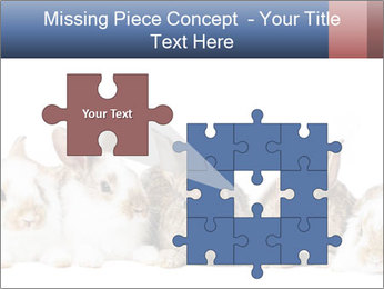 0000062278 PowerPoint Templates - Slide 45