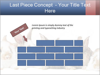 0000062278 PowerPoint Templates - Slide 46
