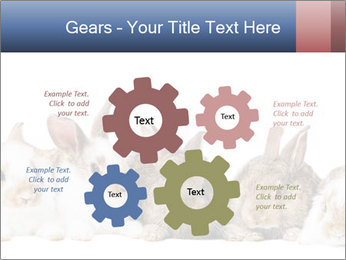 0000062278 PowerPoint Templates - Slide 47