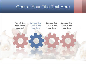 0000062278 PowerPoint Templates - Slide 48