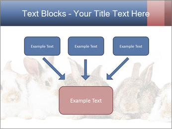 0000062278 PowerPoint Templates - Slide 70