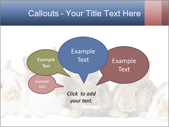 0000062278 PowerPoint Templates - Slide 73