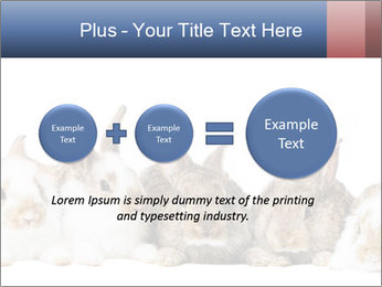 0000062278 PowerPoint Templates - Slide 75