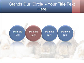 0000062278 PowerPoint Templates - Slide 76