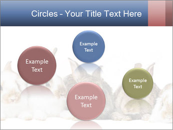 0000062278 PowerPoint Templates - Slide 77