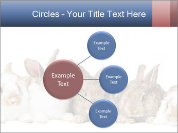 0000062278 PowerPoint Templates - Slide 79