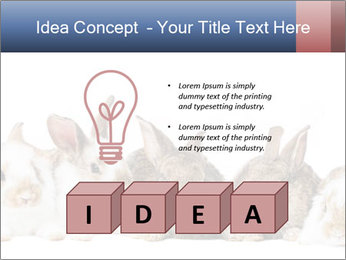 0000062278 PowerPoint Templates - Slide 80