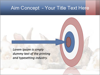 0000062278 PowerPoint Templates - Slide 83