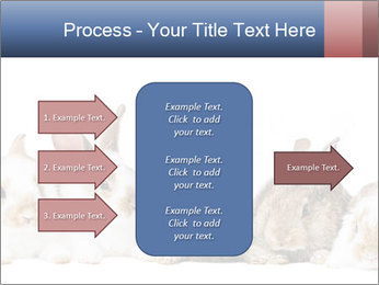 0000062278 PowerPoint Templates - Slide 85