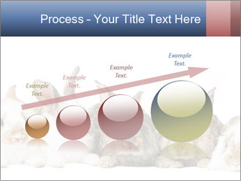 0000062278 PowerPoint Templates - Slide 87