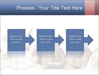 0000062278 PowerPoint Templates - Slide 88