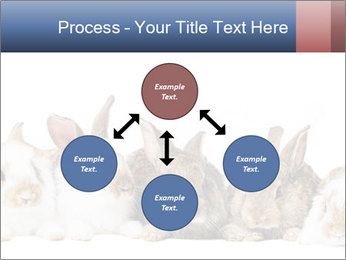 0000062278 PowerPoint Templates - Slide 91