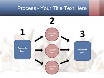 0000062278 PowerPoint Templates - Slide 92