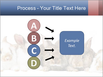 0000062278 PowerPoint Templates - Slide 94