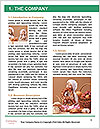 0000062281 Word Template - Page 3