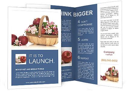 0000062300 Brochure Template