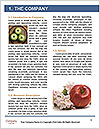 0000062300 Word Templates - Page 3