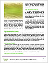 0000062301 Word Template - Page 4
