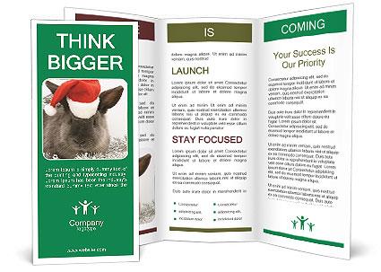 0000062309 Brochure Template
