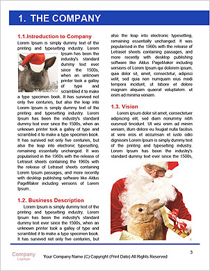 0000062311 Word Template - Page 3