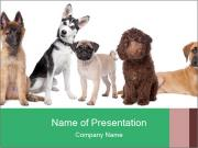 0000062313 PowerPoint Templates