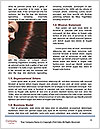 0000062326 Word Templates - Page 4