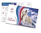 0000062333 Postcard Templates