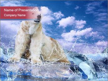0000062333 PowerPoint Templates - Slide 1