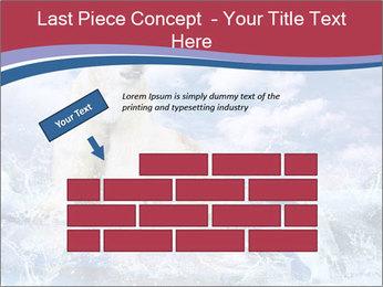 0000062333 PowerPoint Templates - Slide 46