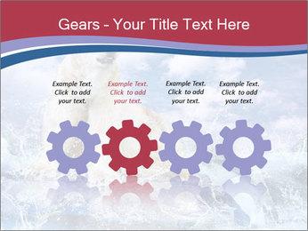 0000062333 PowerPoint Templates - Slide 48