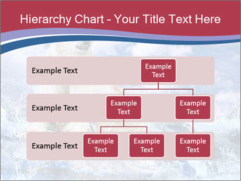 0000062333 PowerPoint Templates - Slide 67