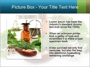 0000062334 PowerPoint Template - Slide 13
