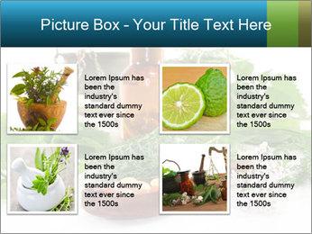 0000062334 PowerPoint Template - Slide 14