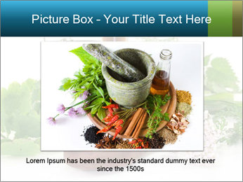 0000062334 PowerPoint Template - Slide 15
