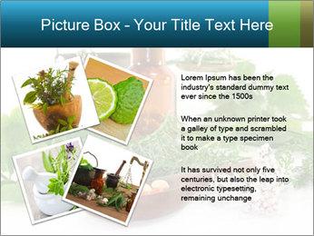 0000062334 PowerPoint Template - Slide 23