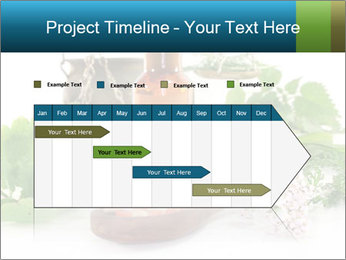 0000062334 PowerPoint Template - Slide 25