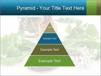 0000062334 PowerPoint Template - Slide 30