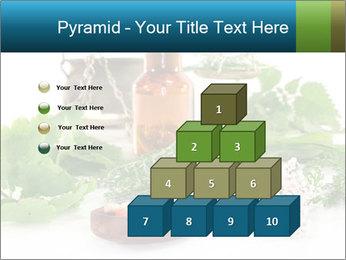 0000062334 PowerPoint Template - Slide 31