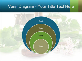 0000062334 PowerPoint Template - Slide 34