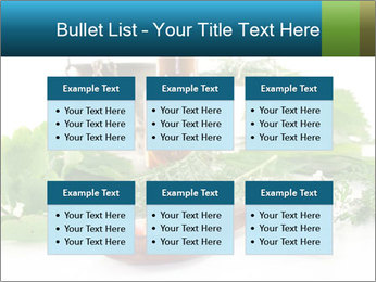0000062334 PowerPoint Template - Slide 56