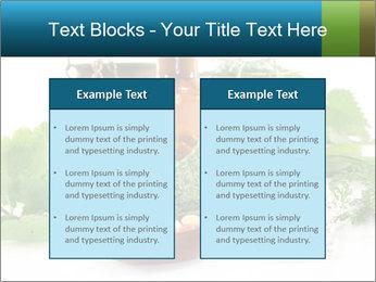 0000062334 PowerPoint Template - Slide 57