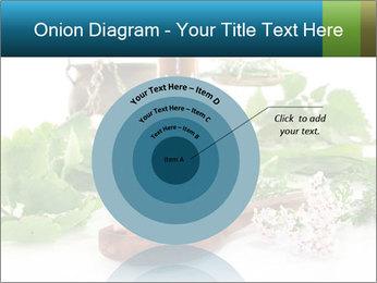 0000062334 PowerPoint Template - Slide 61