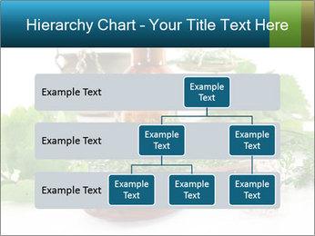 0000062334 PowerPoint Template - Slide 67