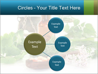 0000062334 PowerPoint Template - Slide 79