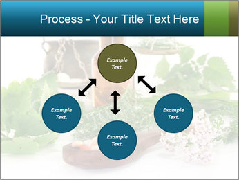 0000062334 PowerPoint Template - Slide 91